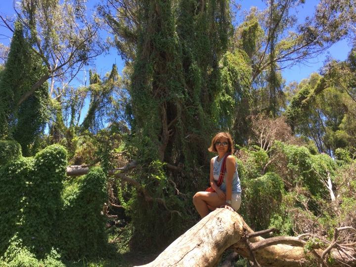 the secret garden that's not so secretanymore